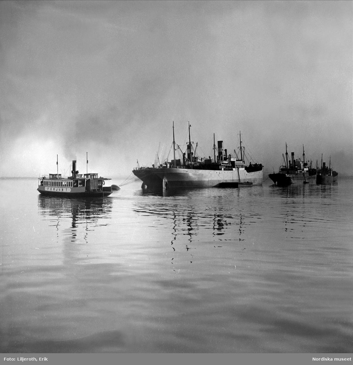 En färja passerar ett fraktfartyg vid Göteborgs hamn.