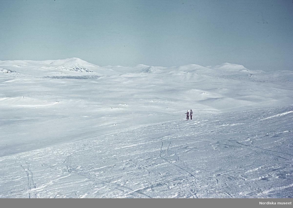 Fjällandskap med skidåkare.
