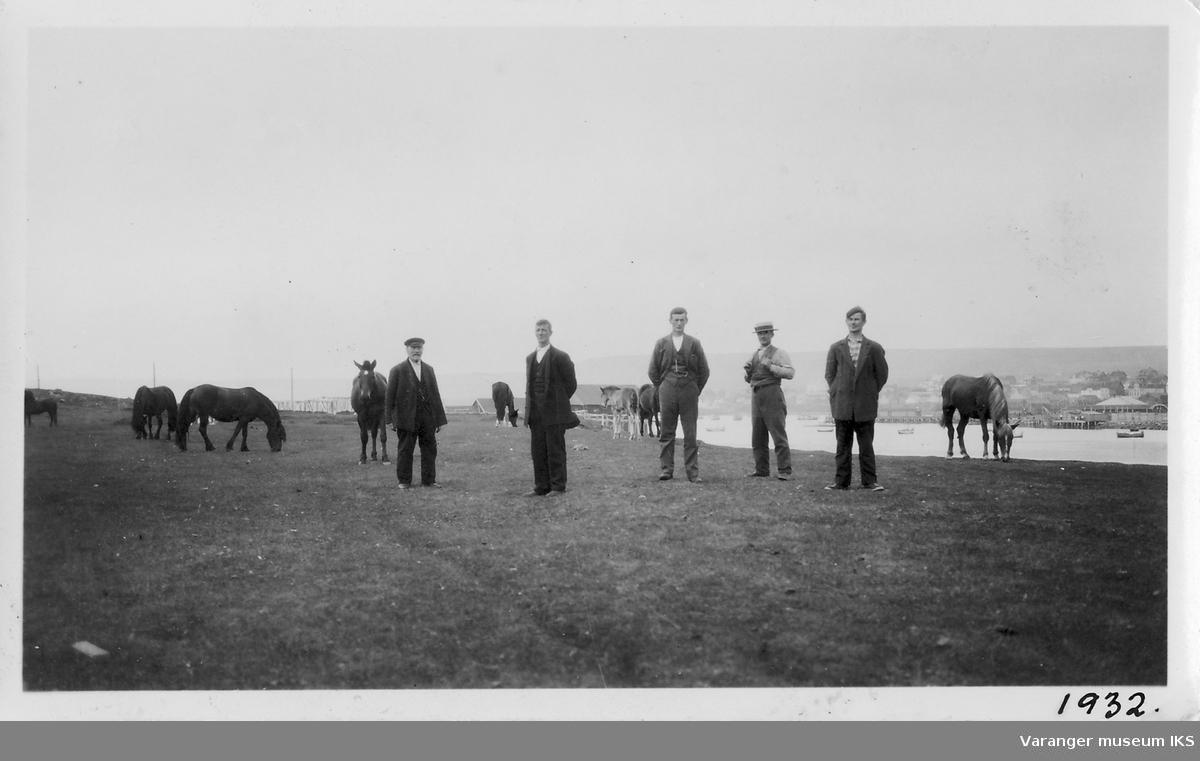 Hester og menn på øya, mot Ørtangen. Antatt fra venstre mot høyre Gustav Dahl, Hans Marki, Olav Marki, Hilmar Marki og Alfred Marki.