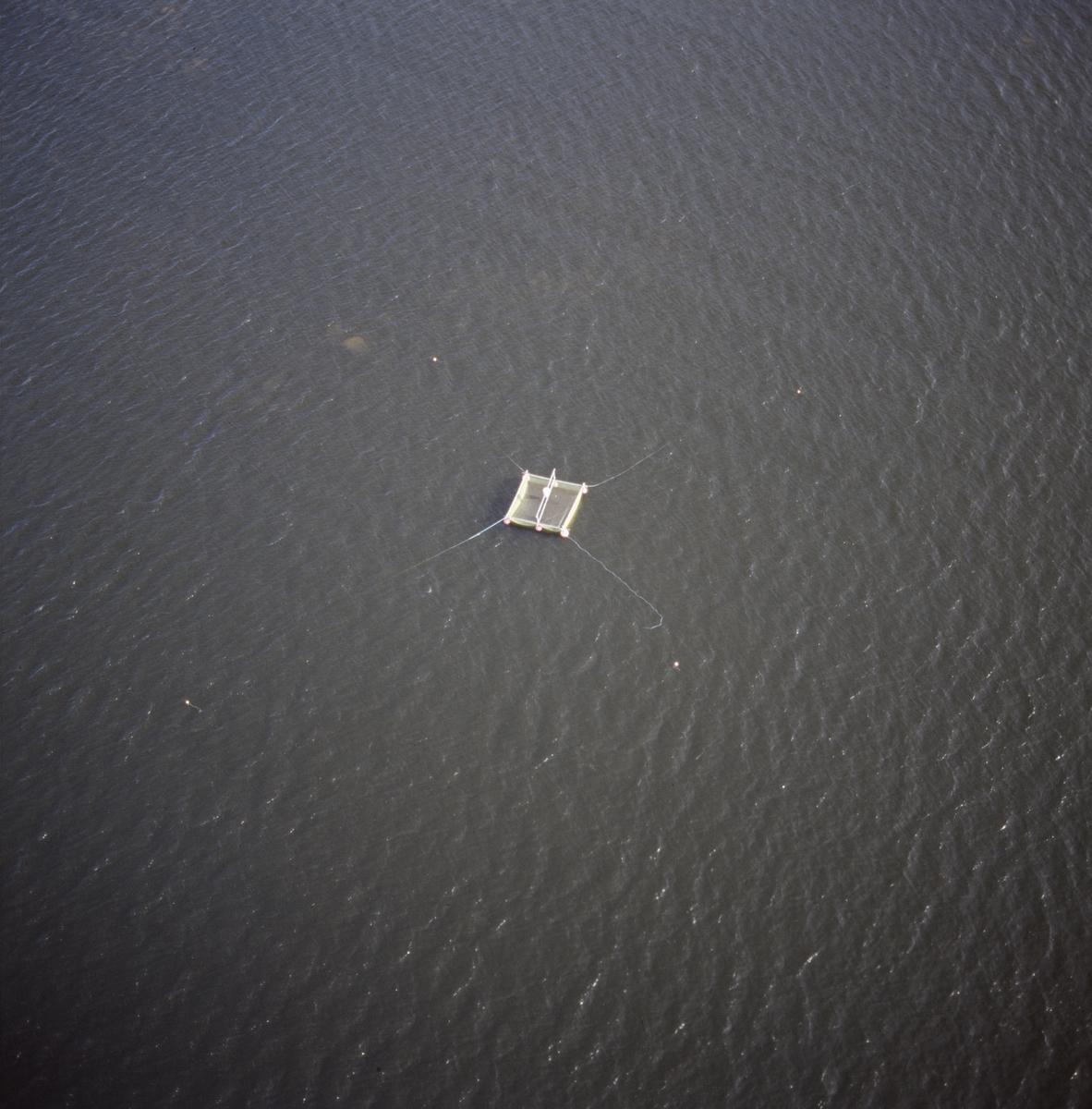 Fiskeredskap i havet utanför Gudinge, Hållnäs socken, Uppland, juni 1989