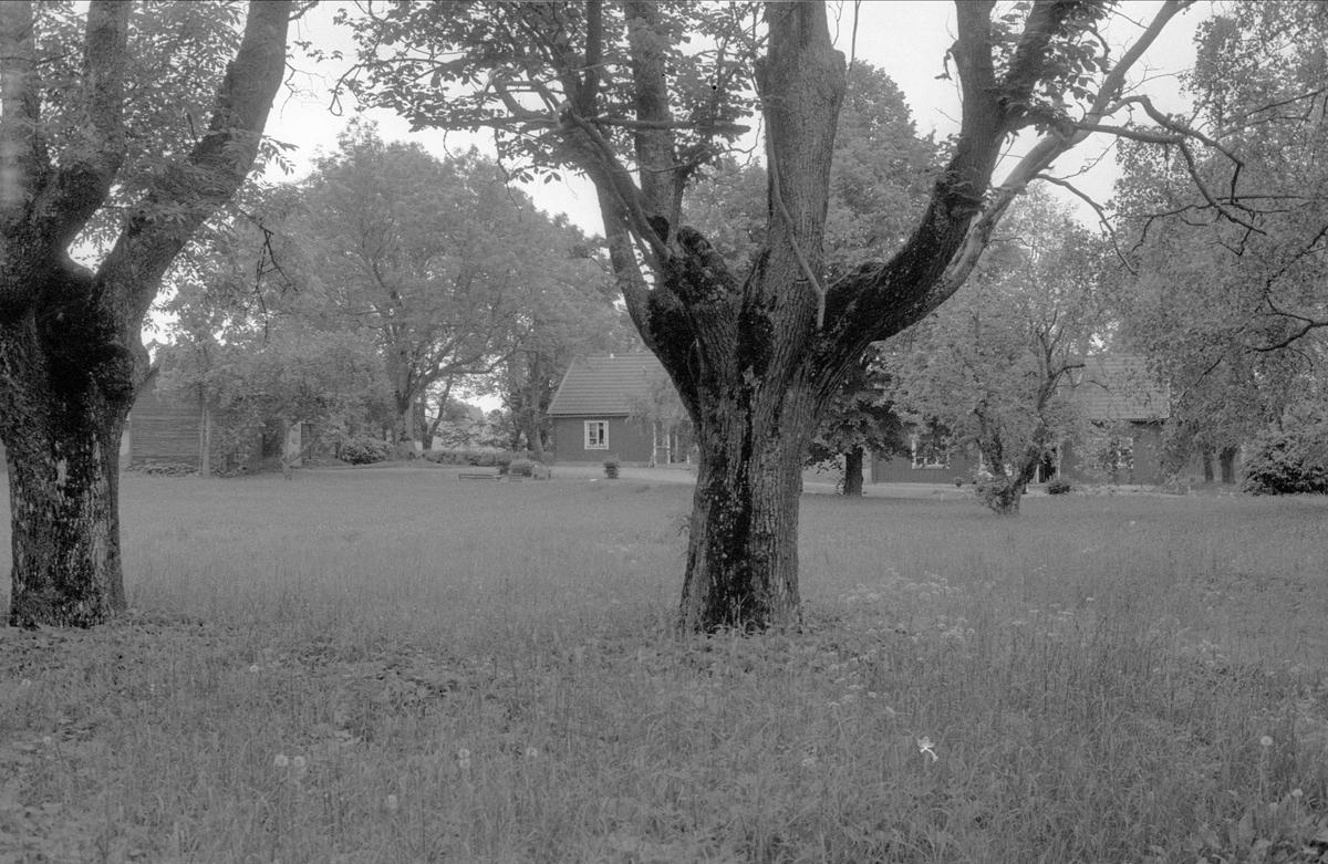 Bostadshus, Forkarby gård, Bälinge socken, Uppland 1983