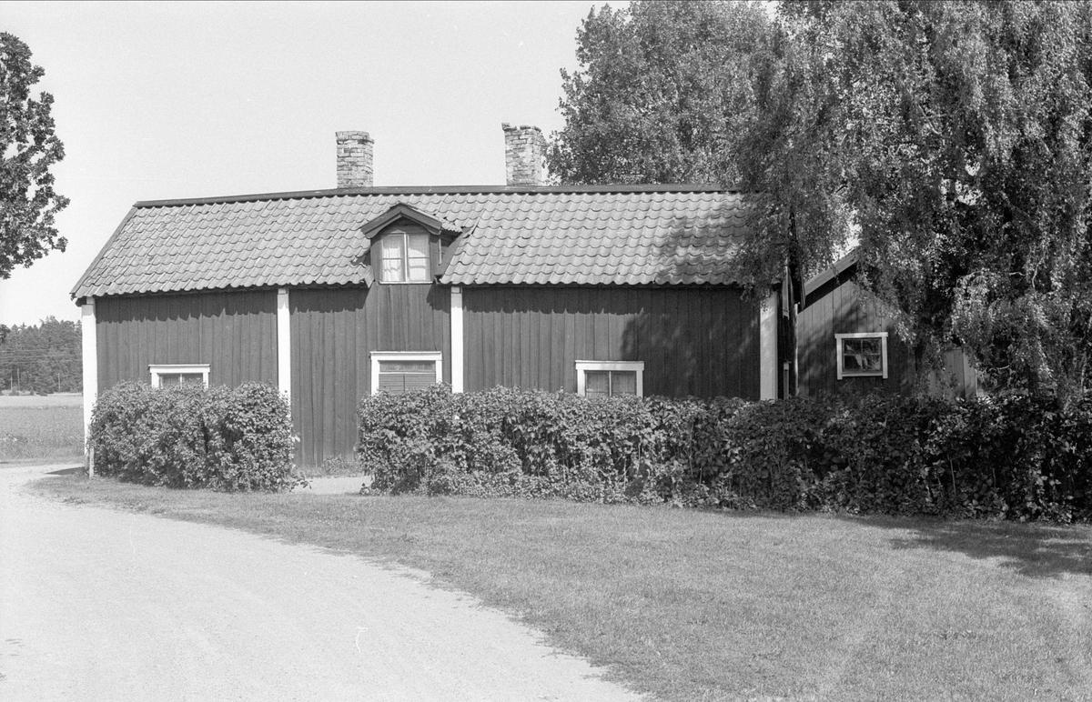 Bostadshus, källare och källarbod, Gäsmesta 1:7, Börje socken, Uppland 1983