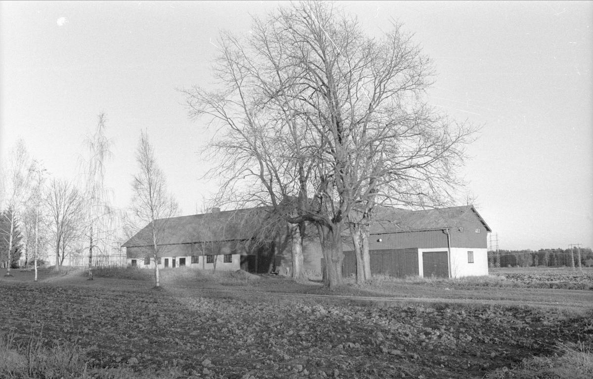 Ladugård/hemlighus och lider, Gamla Uppsala 79:1, Bredåker, Gamla Uppsala socken, Uppland 1978
