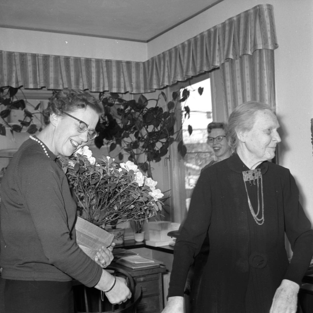 """""""Azalea till Blenda"""" - Sveriges första kvinnliga stadsfullmäktigeordförande Blenda Ljungberg uppvaktas av Gertrud Wiklund, ordförande i Uppsala Kvinnoföreningars Samarbetskommitté, Uppsala januari 1959"""