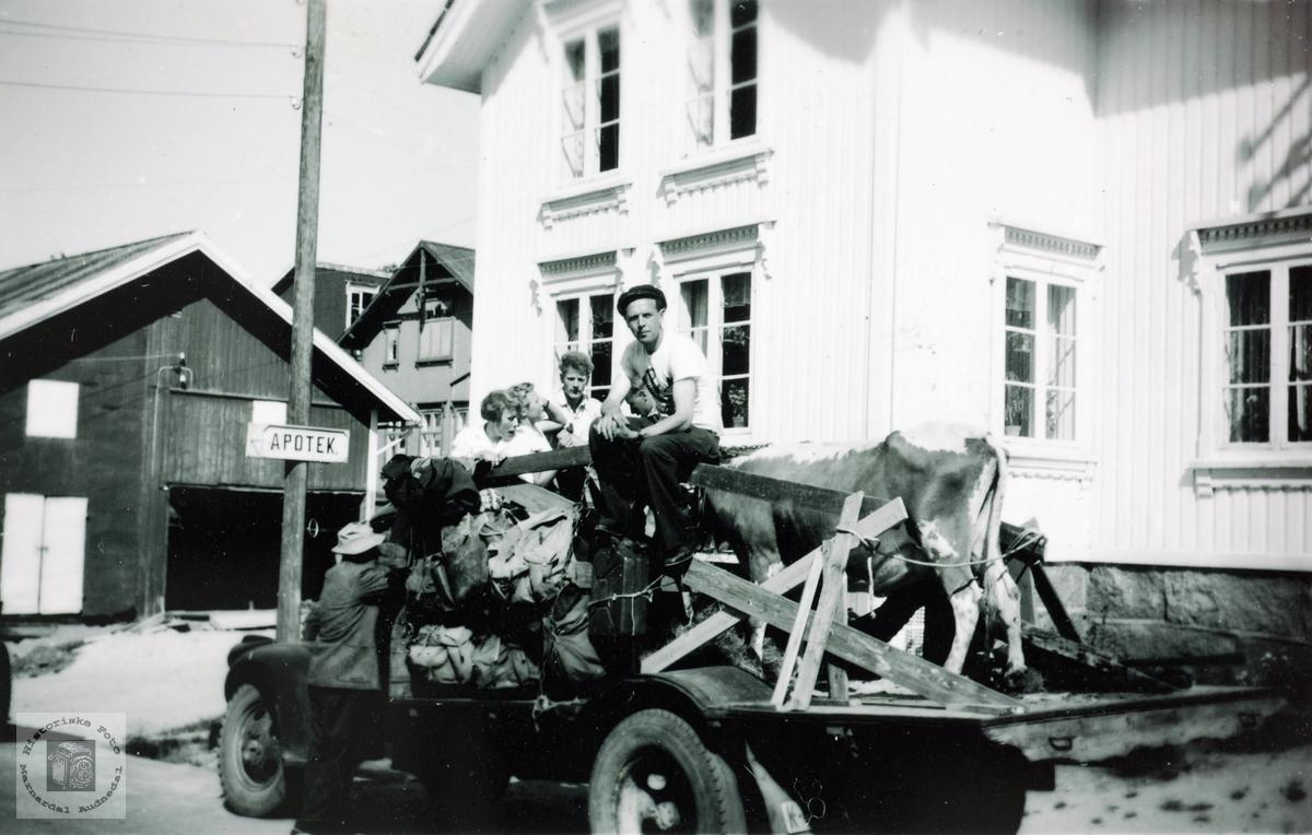 På reise til hogstoppdrag for John Seland i Gjøvdal.