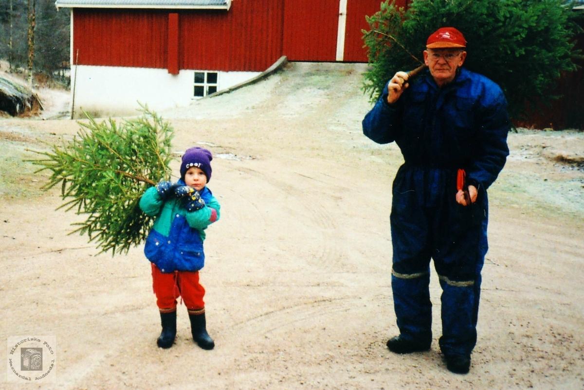 Med bestefar for å hente juletreet hjem på Flottorp. Audnedal.