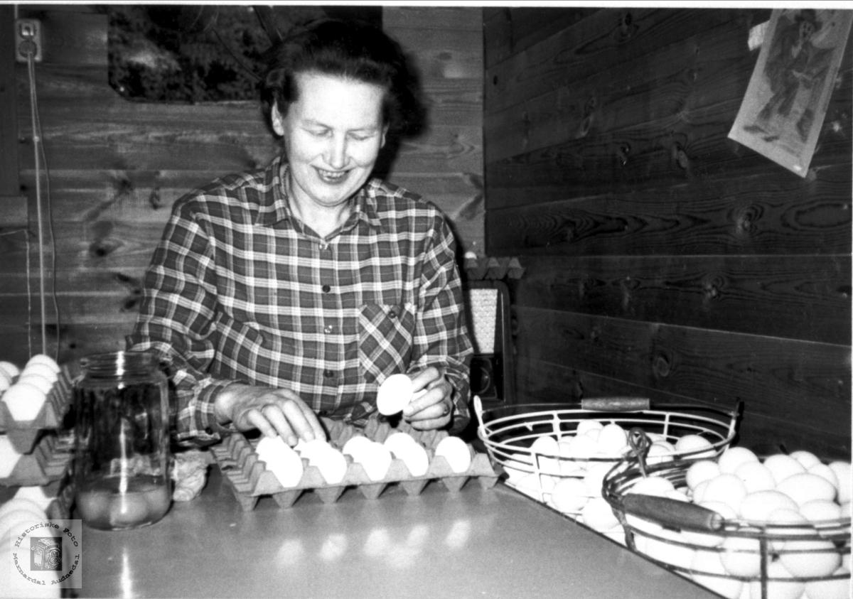 Sortering av egg, Mindrebø, Bjelland.