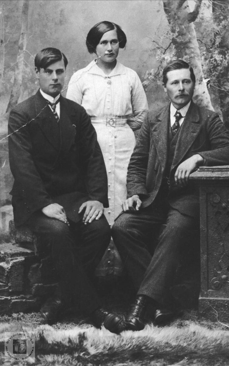 Gruppeportrett av Arnt, Anne Regine og Ludvig, Laudal.