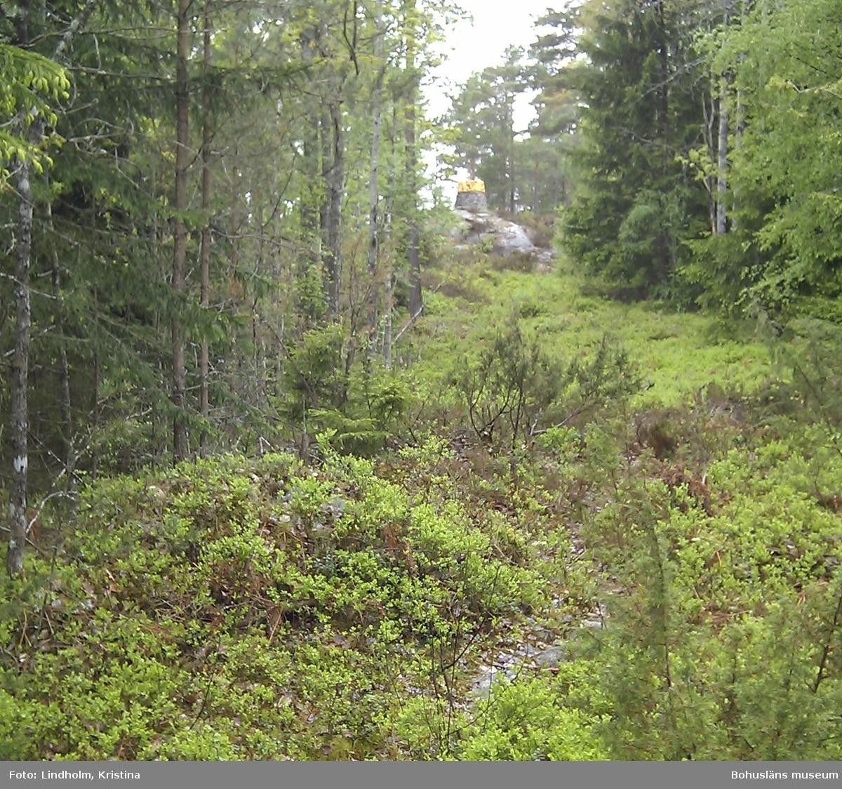 Här bodde Vilhelm Korsgård i början av 1900-talet i ett hus alldeles invid svensk-norska gränsen.  Her bodde Vilhelm Korsgård på begynnelsen av 1900-tallet i et hus like ved den svensk-norske grensen.