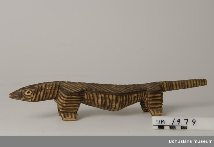 Föremålet visas i basutställningen Uddevalla genom tiderna, Bohusläns museum, Uddevalla.  Ur handskrivna katalogen 1957-1958: Träskulptur; ödledjur. L. 42 cm. H. 7,5 cm smalt spetsigt huvud, rakt utstående svans; strimmig. Hel. Infödingsarbete, Sydafrika.  Lappkatalog: 9  Ernst William Nomell var ett av tio barn son till grosshandlarparet Johan August Nomell  och Elise, f. Kullgren i Uddevalla.  Han arbetade som ingeniör vid diamantbolaget De Beer i Kimberley.