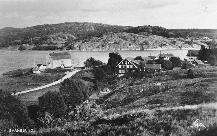 """Text på vykortet. """"Svanesund"""".  Enligt tidigare noteringar: """"Vy över del av Svanesund. Repro 1984 av vykort""""."""