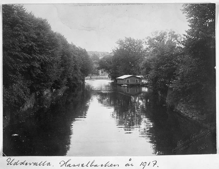 """Text på kortet: """"Uddevalla. Hasselbacken år 1917""""."""