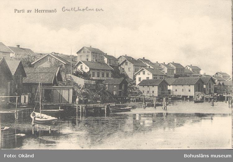 """Tryckt text på kortet: """"Parti av Herrmanö"""". Noterat på kortet: """"Gullholmen""""."""