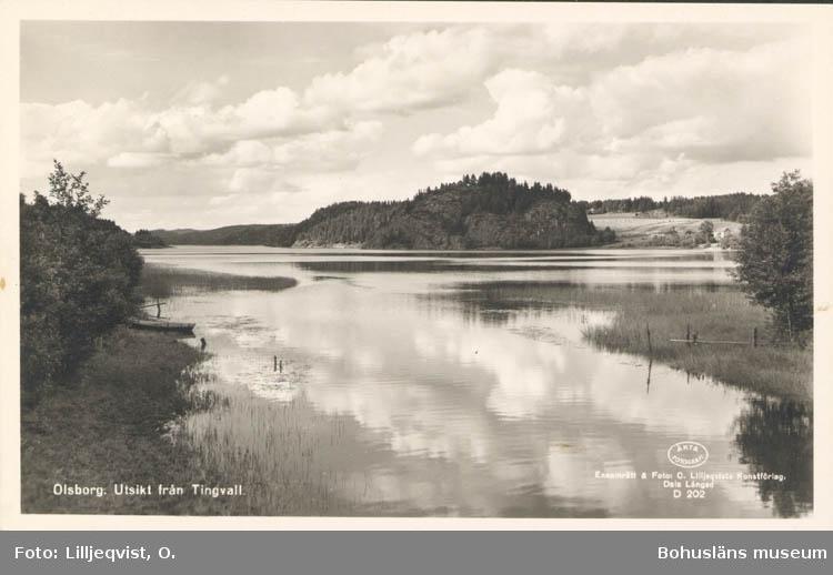 "Tryckt text på kortet: ""Olsborg. Utsikt från Tingvall."" ""O. & S. Helgen, Bullaren."""