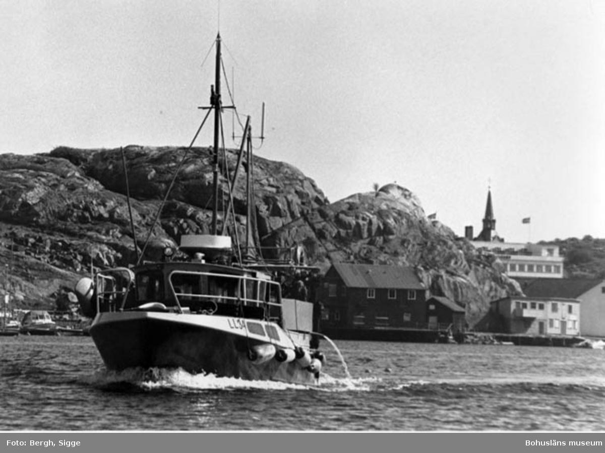 """Enligt text på fotot: """"Valle av Hasselösund ägare Jonny Oresten Kungshamn i bakgrunden Piggeberget""""."""