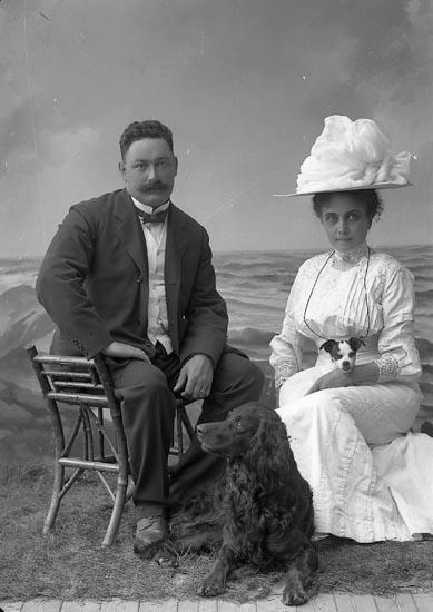"Enligt fotografens journal nr 2 1909-1915: ""Stenborg Herr m. hund Gbg""."