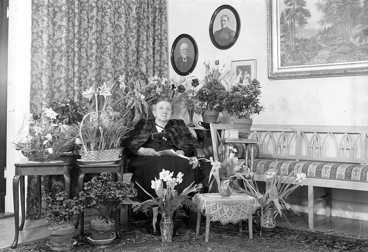 """Enligt fotografens journal nr 8 1951-1957: """"Carlsson, Fru Hanna adr. Thorén Här""""."""