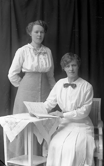 "Enligt fotografens journal Lyckorna 1909-1918: ""Andersson, Anny adr. Bratt Ljungskile""."