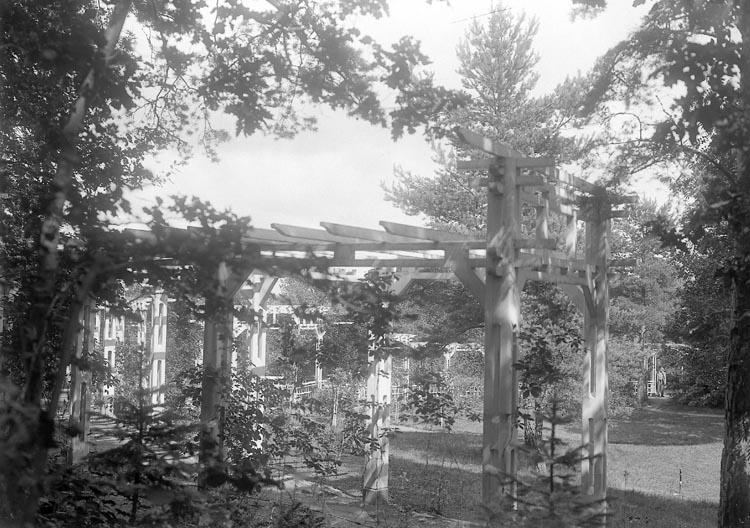 """Enligt fotografens journal nr 5 1923-1929: """"Kullgren, Stadsmäklare Stenungsön"""". Enligt fotografens notering: """"Stadsmäklare W. Kullgren pergolaträdgård""""."""