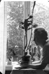 """""""Nilsson, Frida Stenungsund studie"""" enligt fotografens journ"""