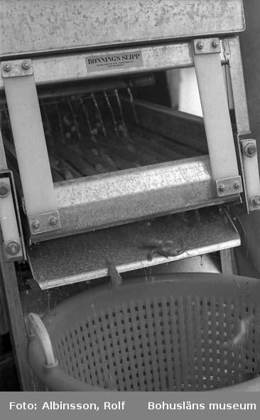 """Enligt fotografens noteringar: """"Räksorteringsmaskinen.""""  Fototid: 1996-03-06."""
