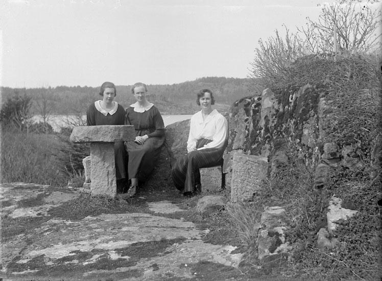 """Enligt senare noteringar: """"Någonstans i bergen vid Gullmarsfjorden."""" (BJ)"""