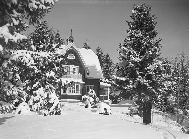 """Text till bilden:""""Snötyngda granar och ett litet hus inne bland dem. Fru Kullgren står i snön intill en gran""""."""