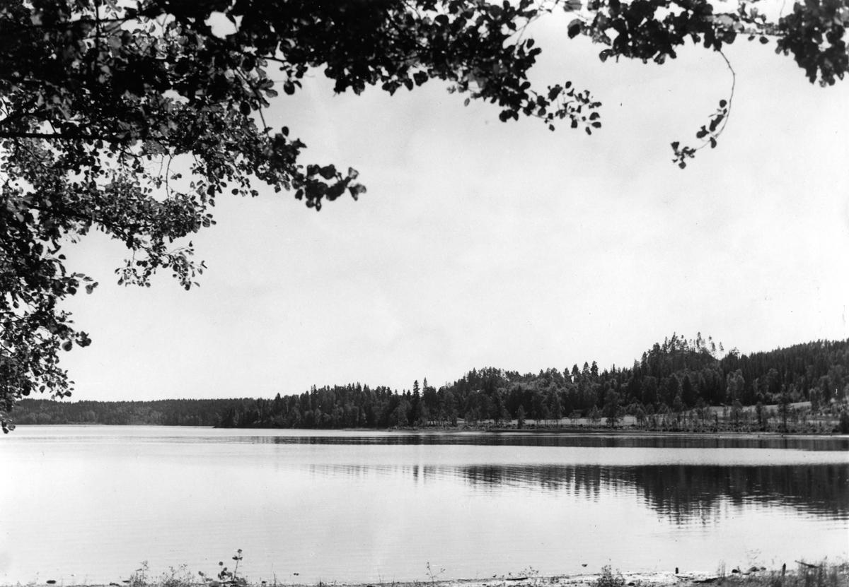 Tenhultasjön med Uvaberget och Glasberget i bakgrunden.