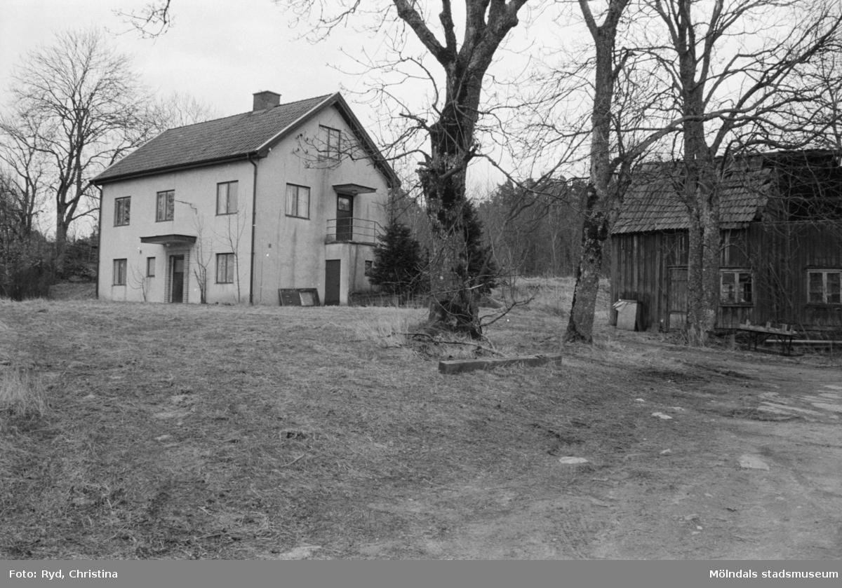 Ett hus, 1992. Fågelsten 1:5.