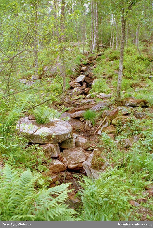 Söder om Porris i juni 1994. Stigen ingår i friluftsområdet.