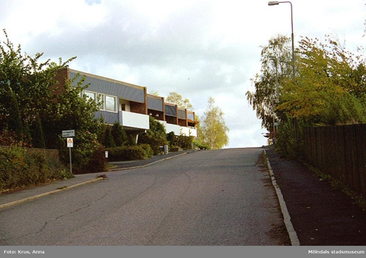 Brovaktaregatan i Kristinedals radhusområde.