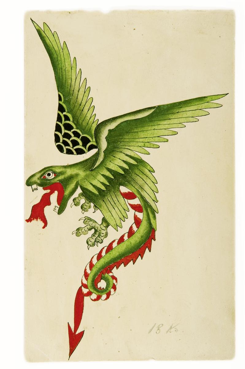 """Tatueringsförlaga. En flygande grön drake med rödvit buk.  """"Ett klassiskt motiv. Draken är en kombination av en västerländsk och österländsk drake. Motivet finns i många olika varianter, då tatuerarna gjorde och fortfarande gör egna versioner av det. Draken har i Kina och Japan en positiv laddning och förknippas med mod. I Japan är draken också förknippad med vatten.""""  Text från appen """"Tatuera dig med Sjöhistoriska"""" som gjordes i samband med utställningen Tro, hopp och kärlek 2012."""