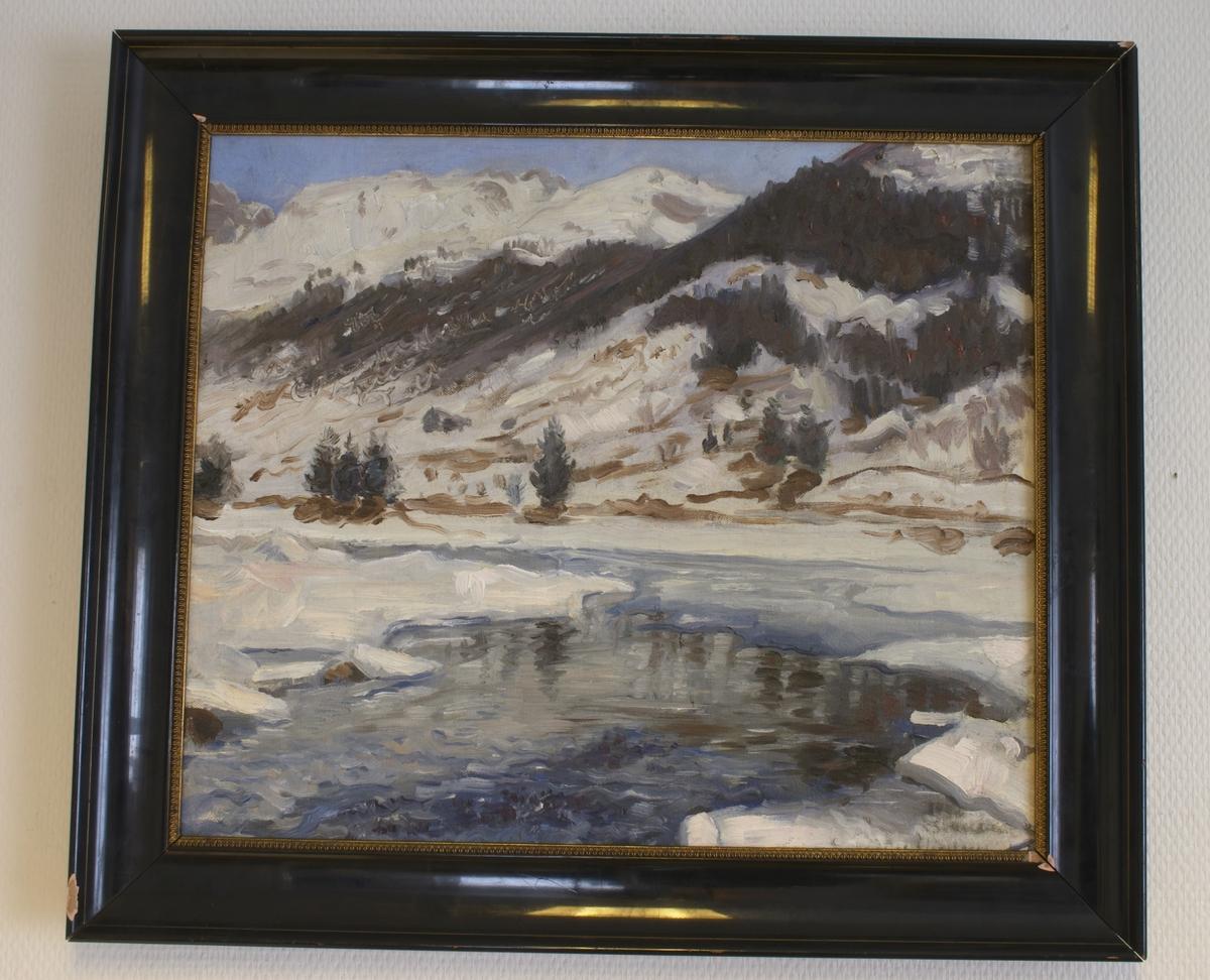 Oljemaleri av Emanuel Vigeland. Maleriet har motiv fra Berg i Valle, Setesdal og er signert og datert 1902. Pr 1/11-2002 er dette det eneste arbeidet vi har i Lindesnes Kommune av Emanuel Vigeland.