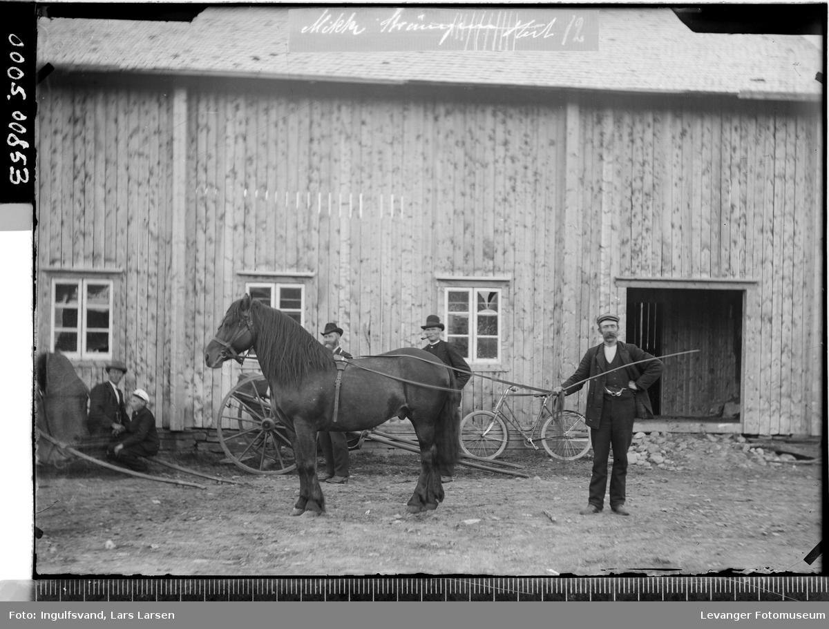 En hest og fem menn foran en bygning.