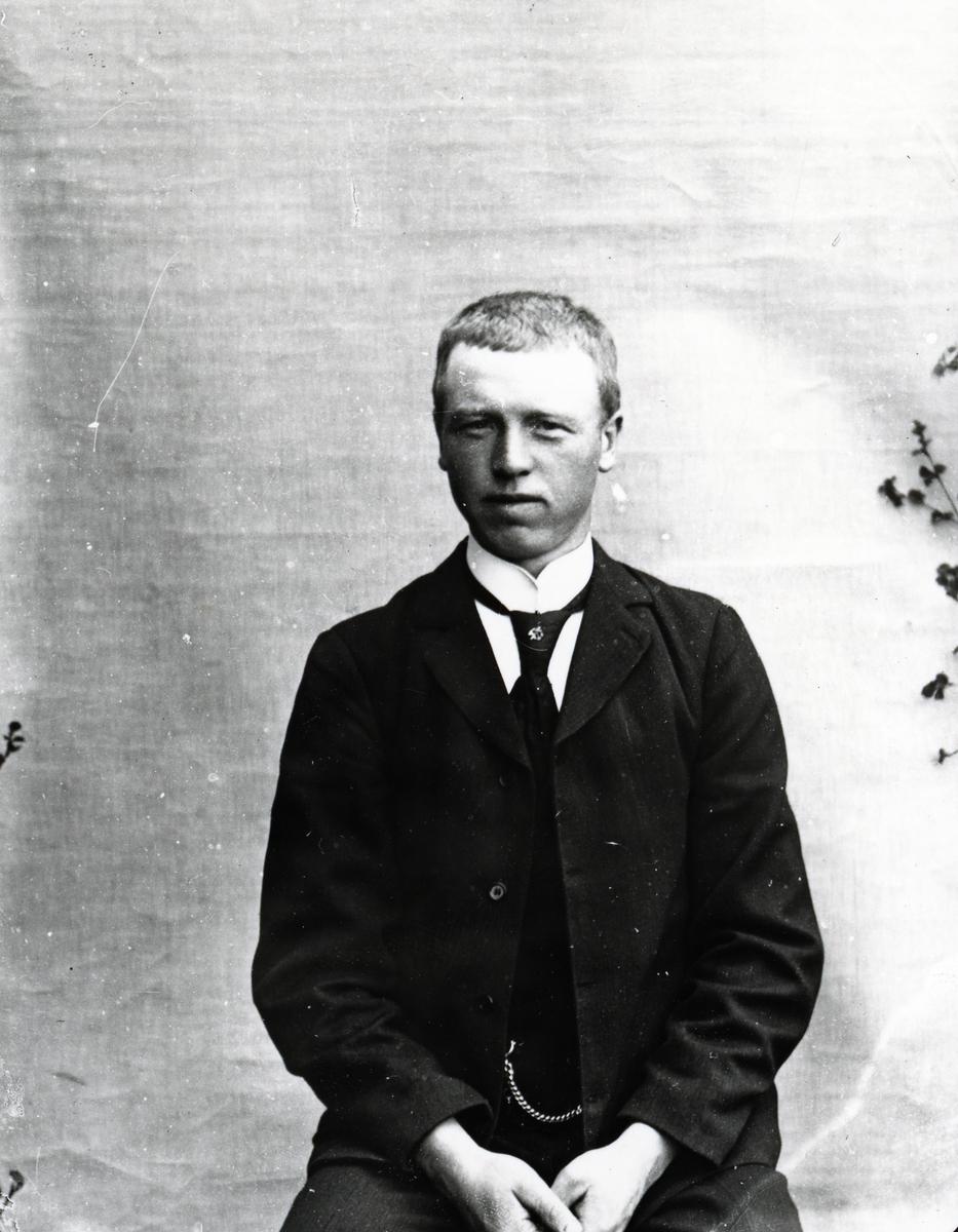 Dresskledd mann i halvfigur, lerretbakgrunn