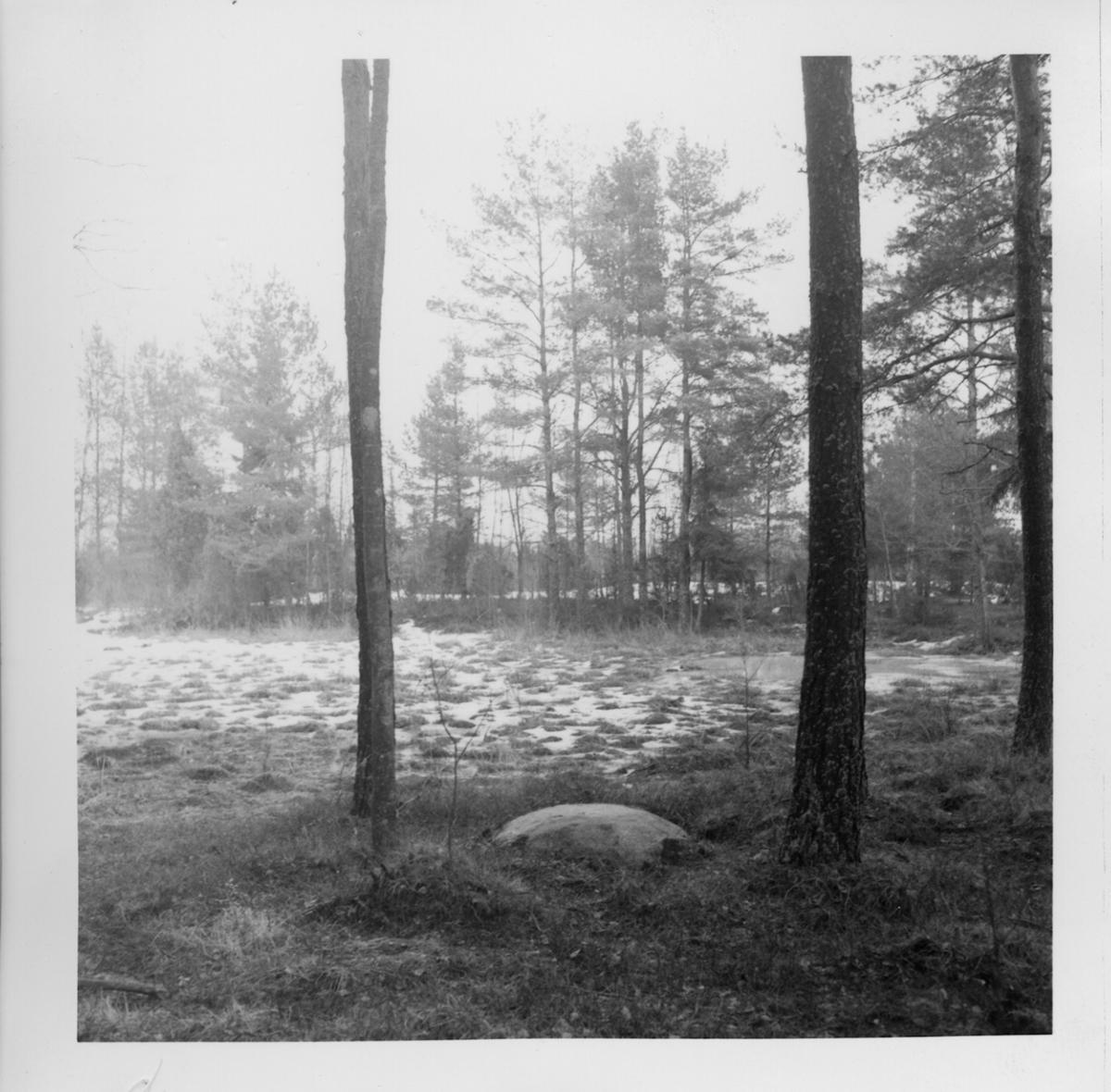 Erikstad, Bergs kullar.