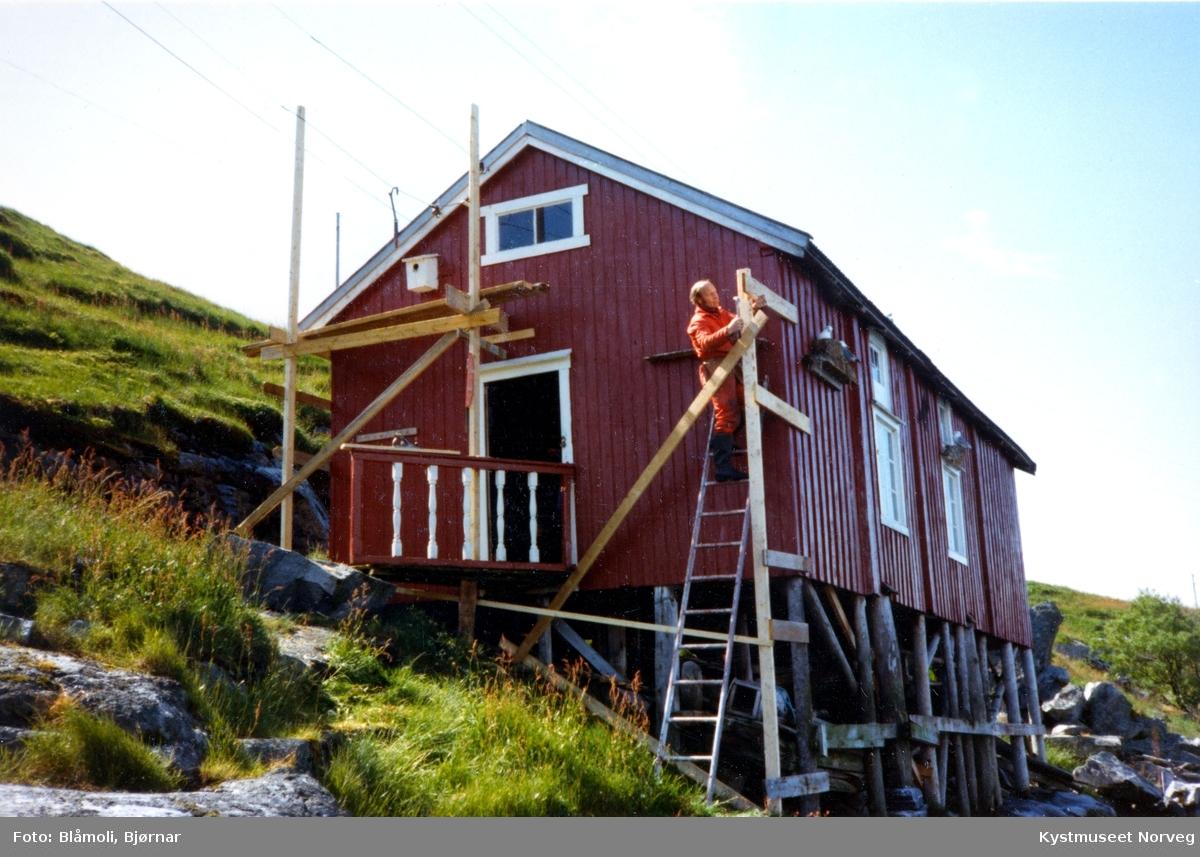 """Sør-Gjæslingan restaurering av """"Petterbua"""""""
