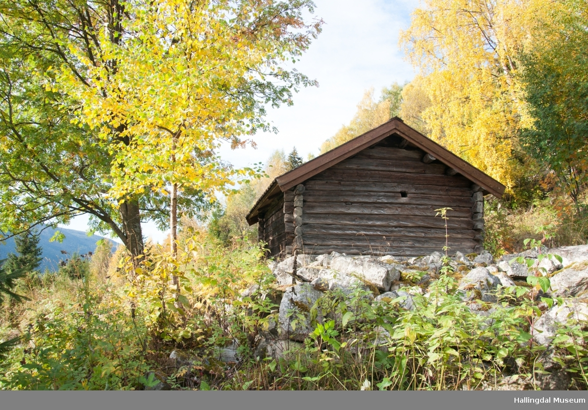 Badstua er fra Trondsgard i Golreppen.  Den skal være bygd mellom 1825 og 1850.  Den er tømret, har jordgolv og torvtak. I badstua tørket de korn og malt.  På grunn av brannfaren står badstua et stykke unna de andre husene.  Slik er den også satt opp på Skaga.