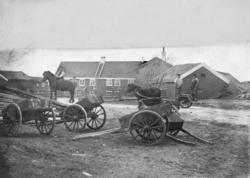 Kjerringøy handelssted. Sett fra østenden av stallen. Bikkvogner. En mann til hest og to som står på ei vogn. Samme bilde som 7673-1.
