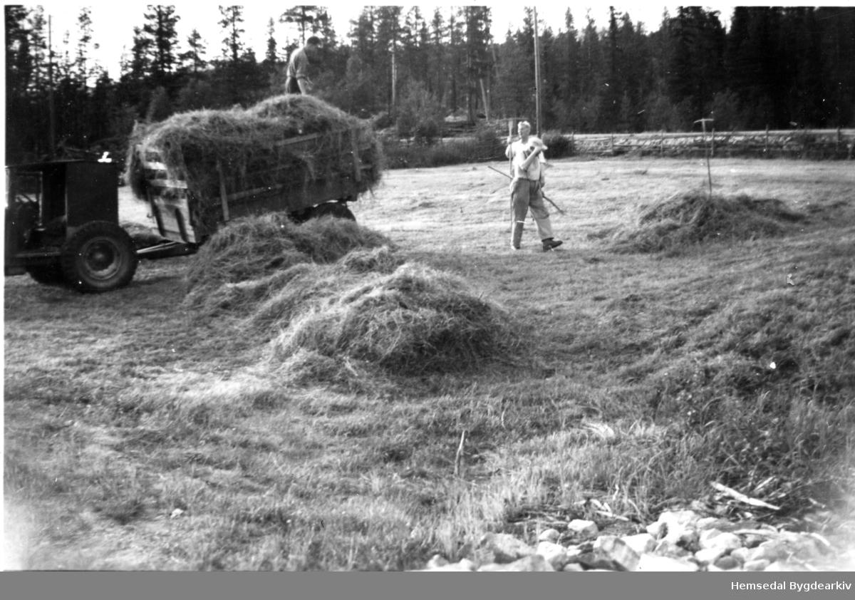 Slåtten er i gang og turrfôret skal køyrast inn på garden Bergheim, 51.46, i Hemsedal. Aslak Gjærde bygde seg traktor sjølv av ein Chevrolet 1924-modell, med Ford V8, gearkasse og kardang. For å få traktoren til å gå sakte nok, vart det montert to gearkassar etter kvarandre. Karane er ukjende.