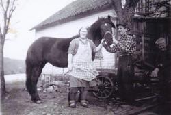 Ingvald og Torbjørg Skårland med hesten Bella. Knut Arne i b