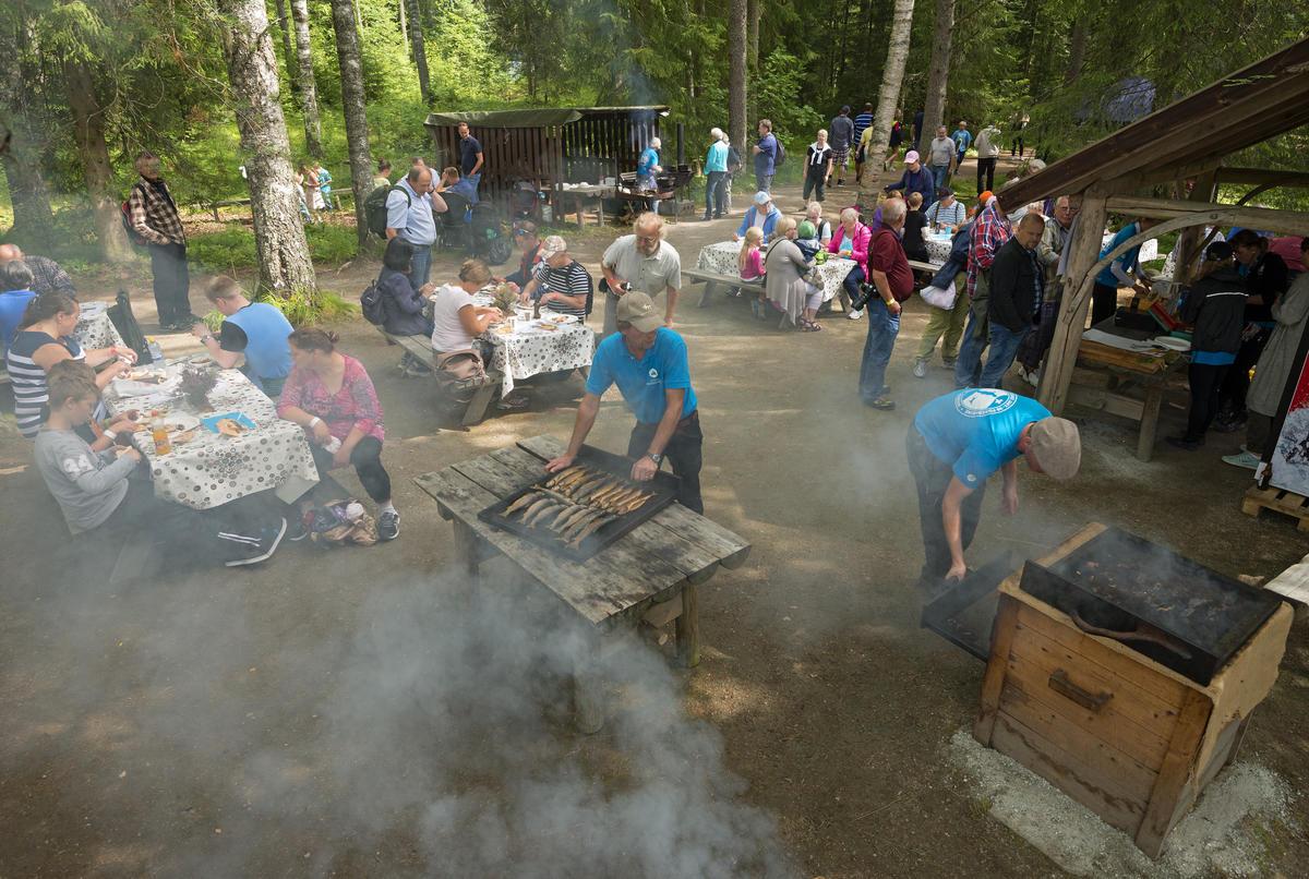 Fiskerøyking på Prestøya under De nordiske jakt- og fiskedager 2015.