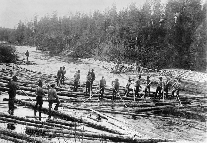 Fløting i Åsta, Åmot, ca 1900.