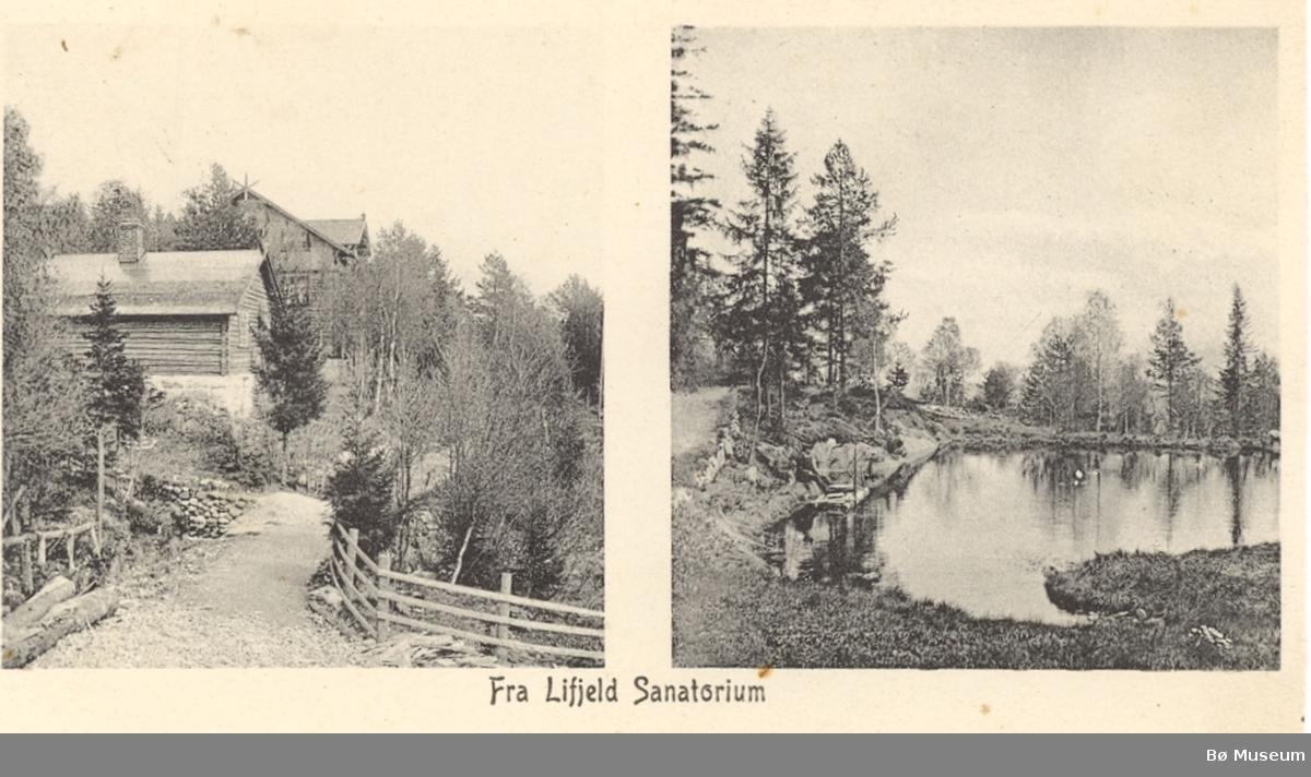 Todelt postkort, Lifjeld sanatorium