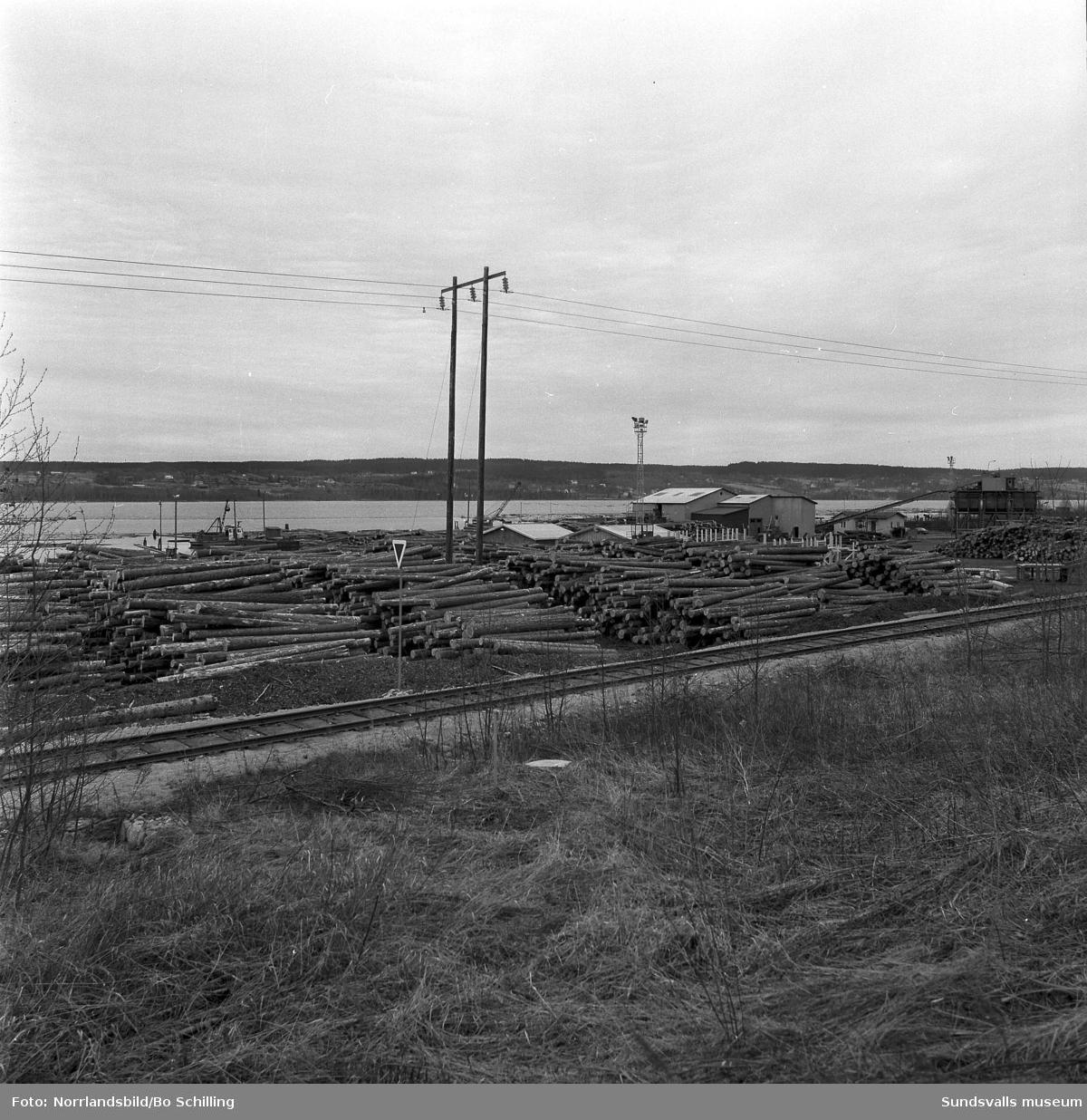 Tunadals sågverk, exteriörbilder och timmerupplag.