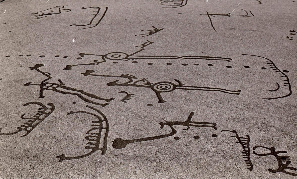 """Hällristningar. Hällristningsområdet i Tanum är ett område i Tanums kommun i Bohuslän där man funnit flera berghällar med stora mängder hällristningar från bronsåldern. Runt den största av dem, Vitlyckehällen, är Vitlycke museum uppbyggt. Hällen har närmare 300 inhuggna figurer och ca 170 skålgropar. Den kanske mest berömda scenen bland alla Tanums hällristningar, """"Brudparet"""", finns här. Bland de övriga närliggande hällarna märks Litsleby med en ca 2,3 meter lång spjutbeväpnad man, """"Spjutguden"""", och Aspeberget med en plöjningsscen, ett antal oxar och skepp. Hällen vid Fossum ligger en bit från de övriga. Den kännetecknas av en mer sammanhållen och konstnärlig komposition. Kanske är den gjord av en enda ristare.  Hällristningarna har i modern tid fyllts i med röd färg för att göra dem tydligare. Det är inte känt om de var målade från början.  (Hämtat från Wikipedia)"""