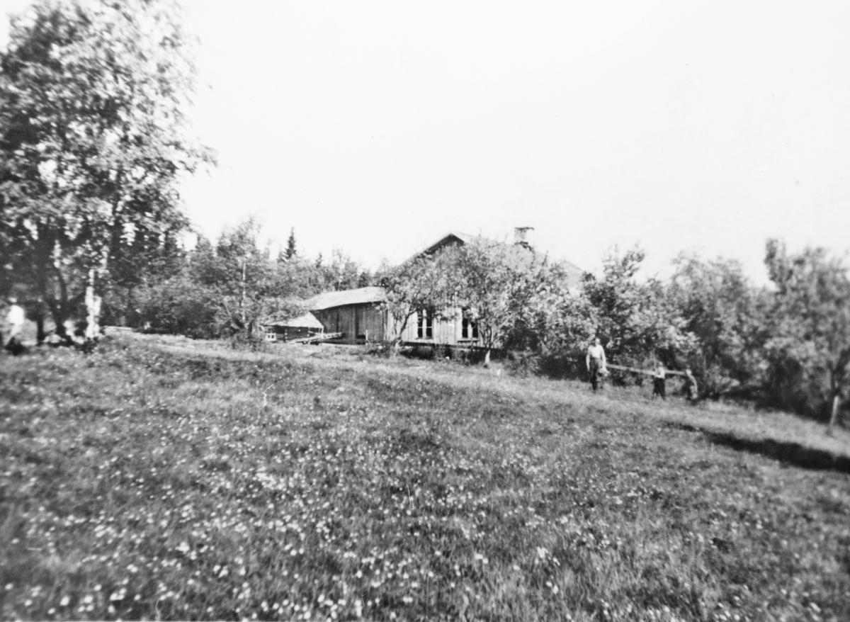 Langlia på Setskog, ca. 1920