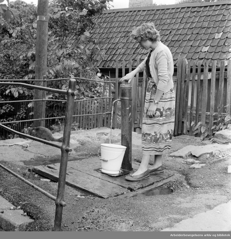 Enerhaugen: .Juni 1958.