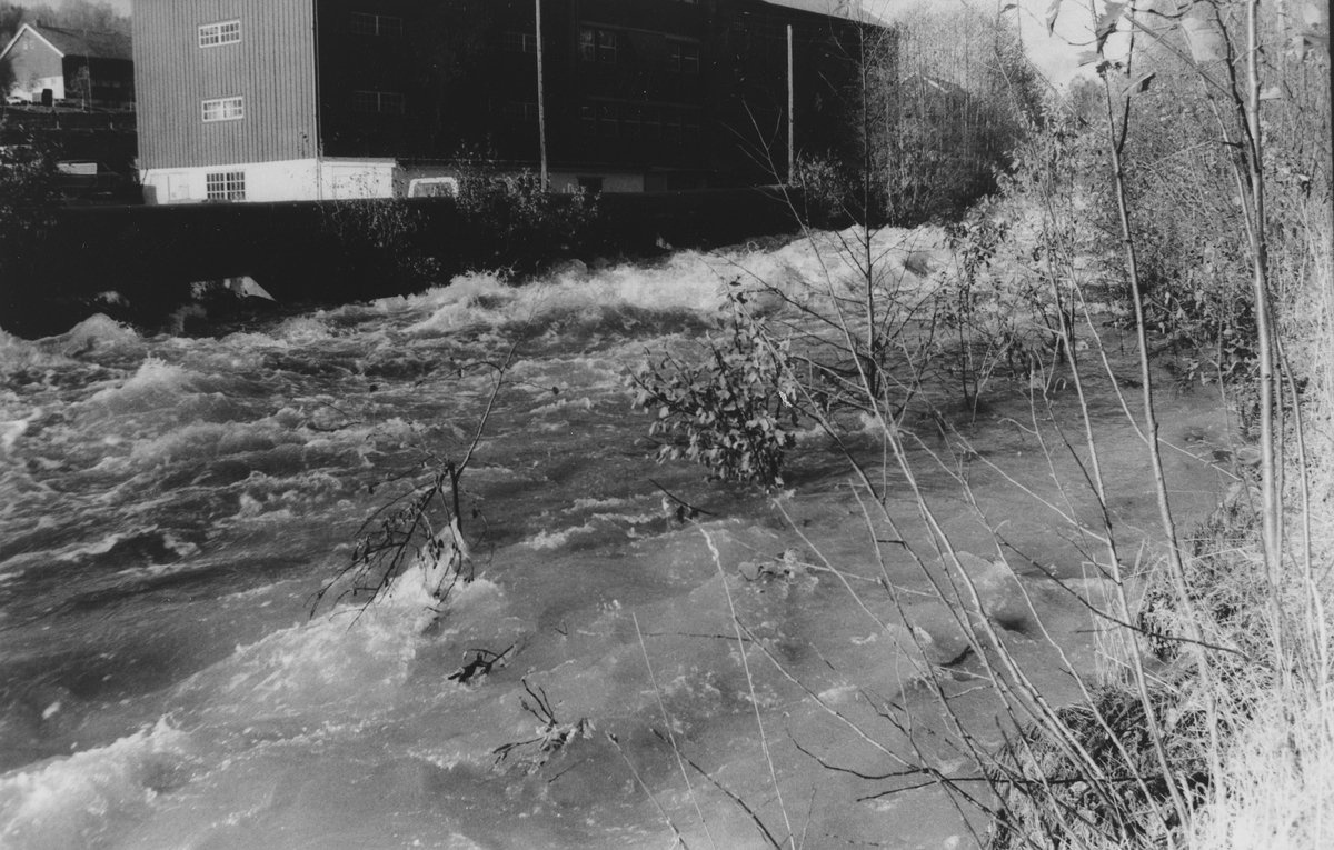 Flom i oktober 1987, Nitelva ved Rotnes, Mølleparken