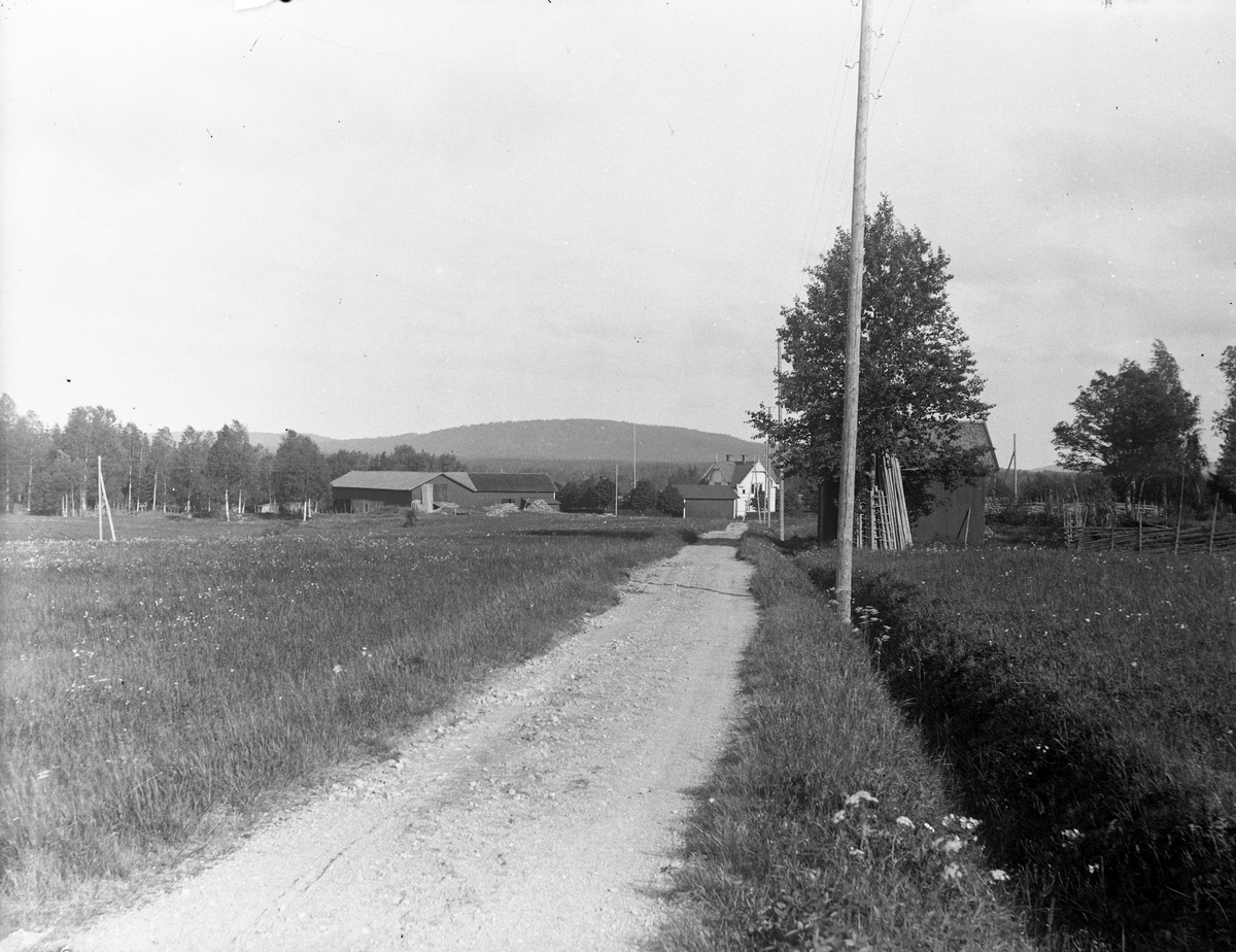 """Byvägen genom Östra Åsmundhyttan, med en vy över """"Ollas"""", Åsmundshyttan nummer 4. Söderåsen i bakgrunden.  Bilden tagen omkring 1925. Bilden finns med Torsåkers Fotohistoriska Sällskap. Bildsida 1"""